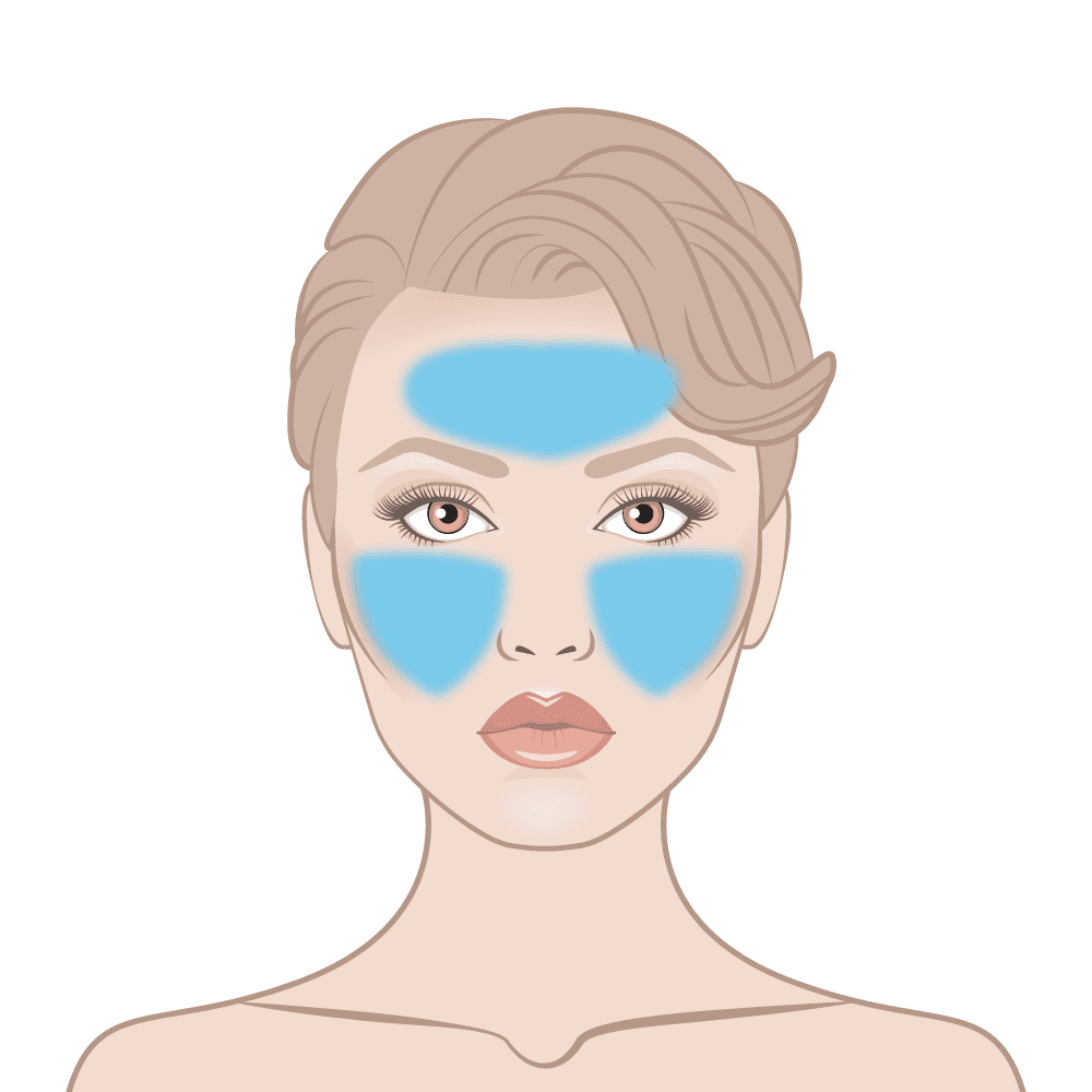 Skin Active Day & Night Skin Area Diagram